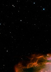 Butterfly emerges from stellar demise in planetary nebula NGC 6302